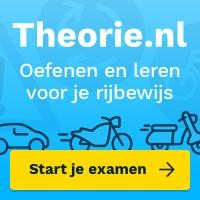 icoontje theorie.nl